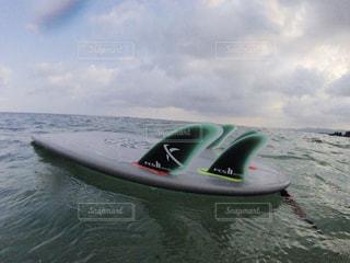 サーフィンの写真・画像素材[443878]