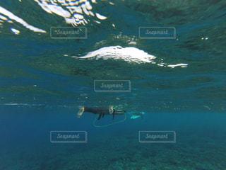サーフィンの写真・画像素材[443879]