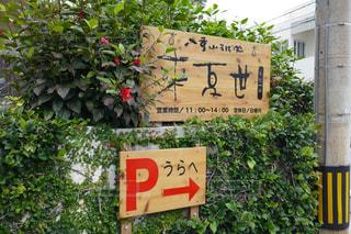 石垣島の写真・画像素材[465122]