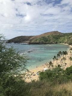 自然の中のハワイの海辺の写真・画像素材[3591693]