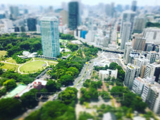東京タワーの写真・画像素材[602681]