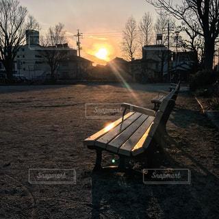 公園の写真・画像素材[431365]