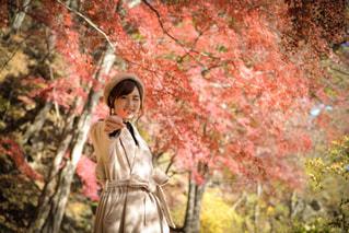 木の隣に立っている人の写真・画像素材[891762]