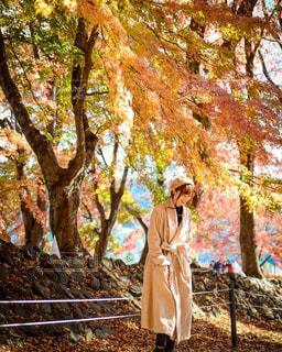 木の隣に立っている女性の写真・画像素材[891766]