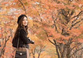 森の横に立っている女性の写真・画像素材[1637968]