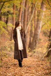 森の横に立っている人の写真・画像素材[1637969]