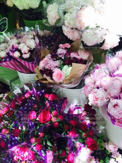 花の写真・画像素材[433204]