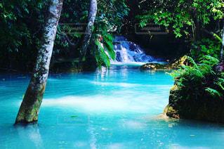 クァンシーの滝の写真・画像素材[951025]