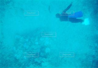 海の写真・画像素材[448407]