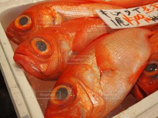 漁港にて(金目鯛)の写真・画像素材[1115225]