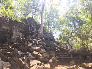 カンボジア - No.437057