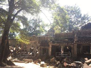 カンボジア - No.438242