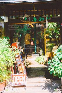 散歩 - No.831273