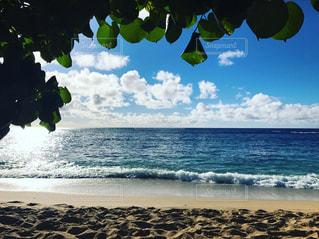 ハワイのシークレットビーチの写真・画像素材[952501]