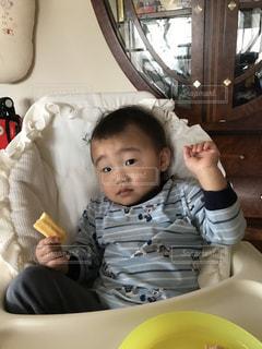 #息子の写真・画像素材[442023]