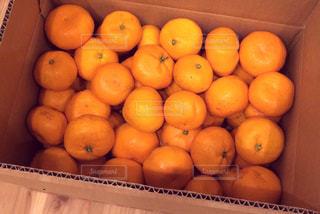 果物の写真・画像素材[437134]
