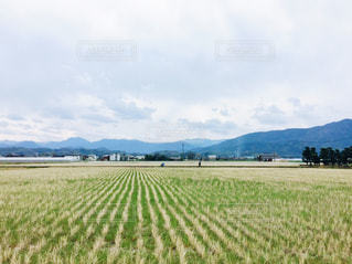 田舎 - No.440291