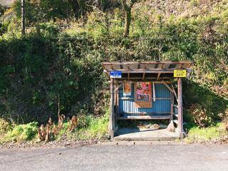 バス停の写真・画像素材[440636]