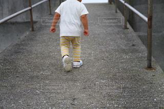 お散歩の写真・画像素材[577790]