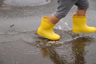 雨上がりの写真・画像素材[577803]