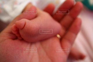 赤ちゃんの足の写真・画像素材[1541188]