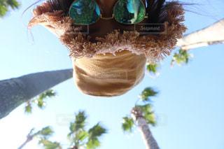 ヤシの木の写真・画像素材[502170]