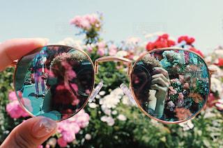 レンズに写る世界の写真・画像素材[509714]
