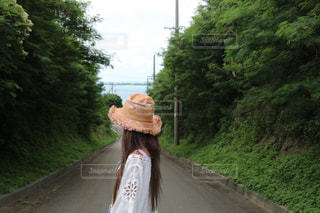 沖縄 - No.532336