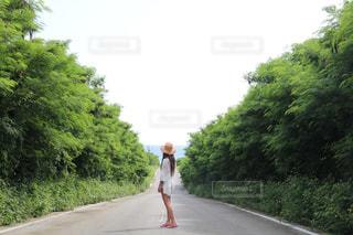 沖縄 - No.532337