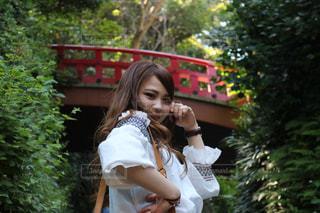 江ノ島の写真・画像素材[537573]