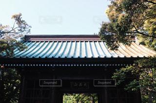 日本の写真・画像素材[585508]