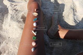 海の宝物の写真・画像素材[758790]