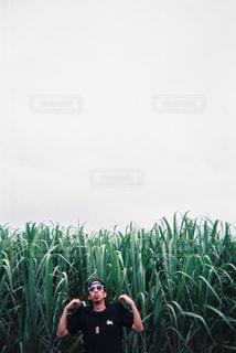 草の中に立っている男の人 - No.865213