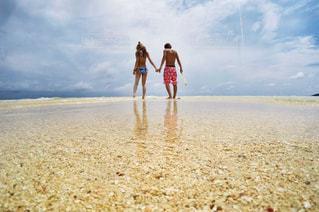 水面散歩の写真・画像素材[999747]