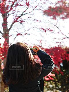 リトルカメラ女子の写真・画像素材[1141095]
