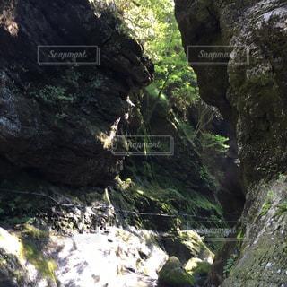 自然の写真・画像素材[439476]