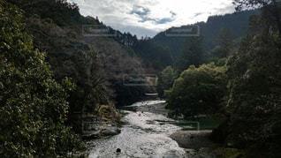 自然の写真・画像素材[439481]