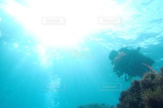 海の写真・画像素材[441315]