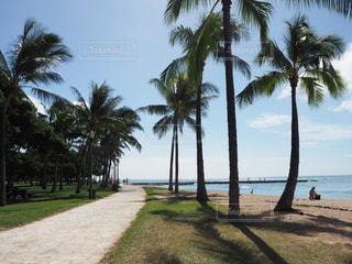 ハワイのビーチの写真・画像素材[2119979]