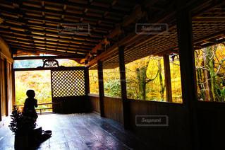 紅葉の秋の写真・画像素材[1246137]