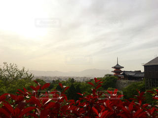 ある日の京都からの写真・画像素材[1258904]