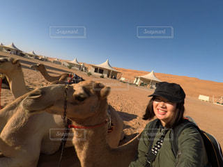 ラクダとツーショットの写真・画像素材[1308081]
