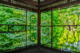 大きなガラス窓の写真・画像素材[2221435]
