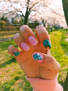 春 - No.439820