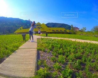 緑豊かな緑のフィールドの上に座っている面の写真・画像素材[823096]