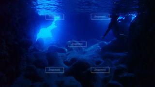 暗闇の中を泳いでいる人の写真・画像素材[1134952]