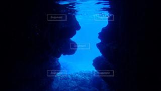 暗闇の中で泳いでいるストップ ランプの写真・画像素材[1134953]
