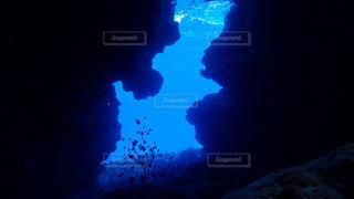 暗闇の中で泳いでいるストップ ランプの写真・画像素材[1134954]