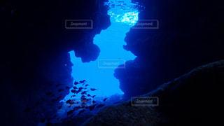 暗い部屋の中を泳いでいる人の写真・画像素材[1134956]