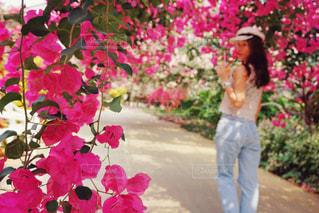 ピンクの花の人の写真・画像素材[1136809]